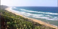 iSimangaliso - Wetland - Park - KwaZulu Natal - South Africa